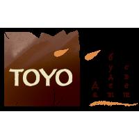 Toyo (Япония)